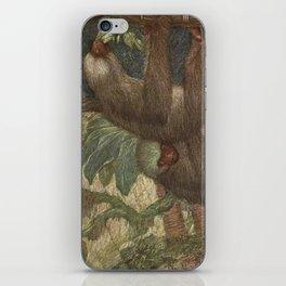 Vintage Sloth Painting (1909) iPhone Skin
