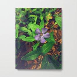 Fiore Viola Metal Print