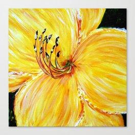 Soft Yellow Daylily Canvas Print