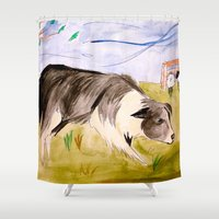 border collie Shower Curtains featuring Border Collie by Caballos of Colour