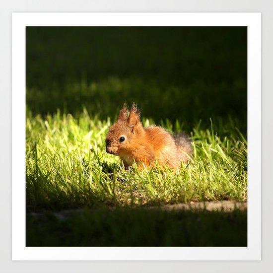 Cute Squirrel Cub  Art Print