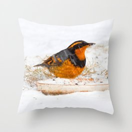 Varied Thrush in the Snow Throw Pillow