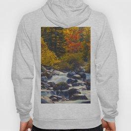 Autumn River II Hoody