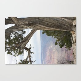 The Grand of the Grand Canvas Print