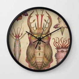 Cephalopodoptera Tab. II Wall Clock