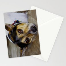 Terrier Stationery Cards
