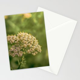 Again Stationery Cards