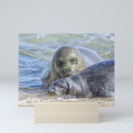 Mama Monk Seal and Pup at the Shoreline, No. 2 - RB00 and PK1 Mini Art Print