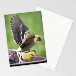 Goldfinch 3 Stationery Cards