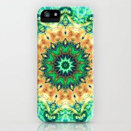 Turtle Kaleidoscope iPhone Case