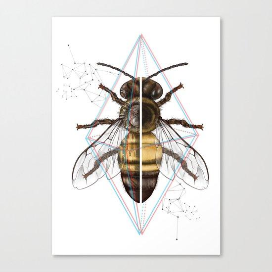 BeeSteam Canvas Print