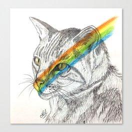Cat's eye rainbow Canvas Print