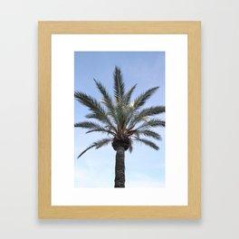 Palma - Matteomike Framed Art Print
