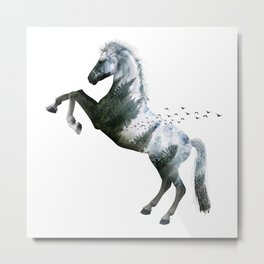 Horse nature view Metal Print