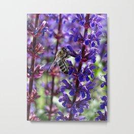 Bee on Purple Flowers Metal Print