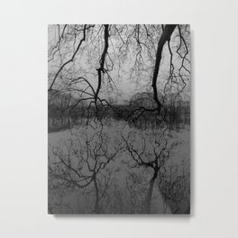 Reflection #2 Metal Print