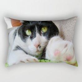 Khoshek sweet cat Rectangular Pillow