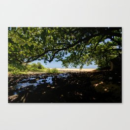 Enjoy the shade Canvas Print