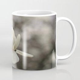 The Fairest of Them All Coffee Mug