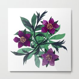 Chilled Winter Hellebores Metal Print