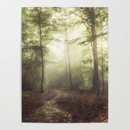 german rain forest Poster