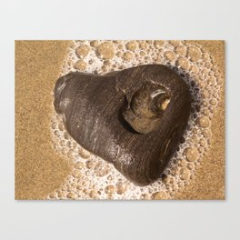 Heart of Goleta Beach Canvas Print