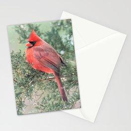 Christmas Bird (Northern Cardinal) Stationery Cards