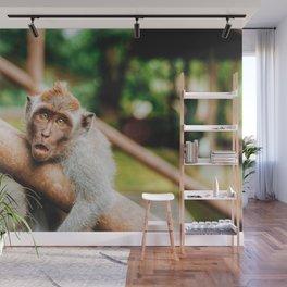 Cute Monkey (Color) Wall Mural