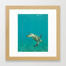 Dive dive dive Framed Art Print