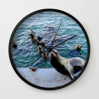 lions Wall Clocks featuring Sea Lions by KatieKatherine