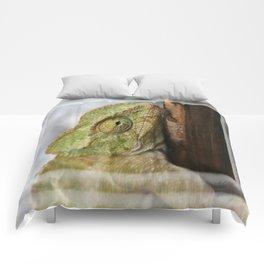 Chameleon Hanging On To A Door Comforters