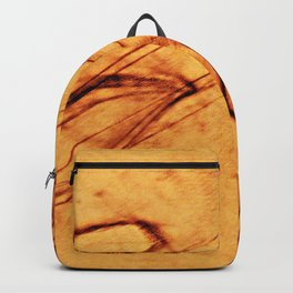 What Comes Before, What Lies Beneath From a Different Perspective Backpack
