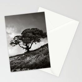 Tree and cloudy sky Stationery Cards