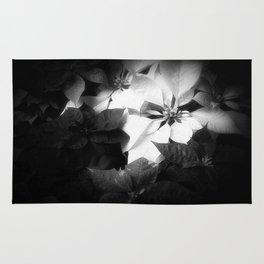 Mixed color Poinsettias 1 Dark Rug