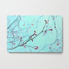 Pink Spring Flowers on Aqua Blue Green Sky Metal Print