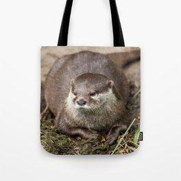 Sunning Otter Tote Bag