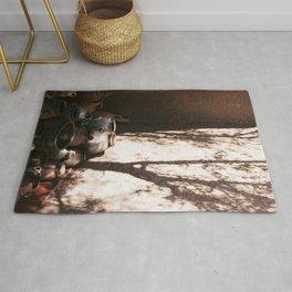 Shadow Light In Morocco Art Print Rug