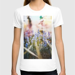 Field of Lavender 02 T-shirt