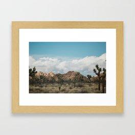 Joshua Tree in a blur Framed Art Print