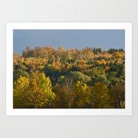 Pure Autumn Colours Art Print