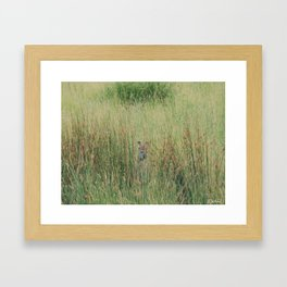 Playing hide and seek Framed Art Print