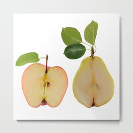 Illustration of apple and pear isolated on white background Metal Print
