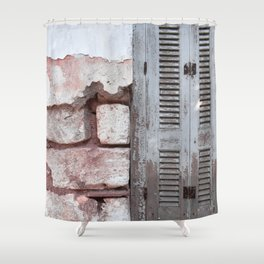 Walls and Windows Shower Curtain
