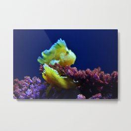 Pair Of Leaf Scorpionfish Metal Print