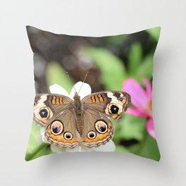 Beautiful Buckeye Butterfly Throw Pillow