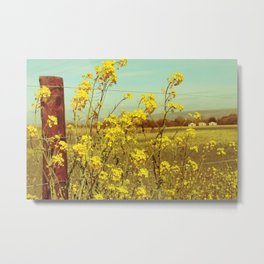 Spring Breeze (Mustard Plants and Cottage) Metal Print