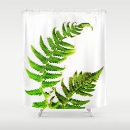 Fern on white Shower Curtain