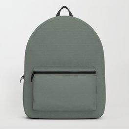 Behr Village Green (Greenish Dark Gray) N410-5 Solid Color Backpack