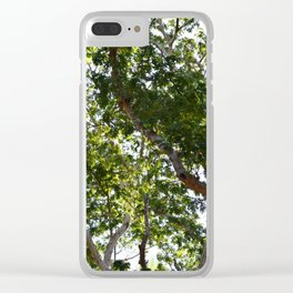 Photo 66 Tropical Trees Clear iPhone Case