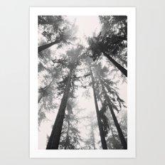 Towards The Sky Art Print
